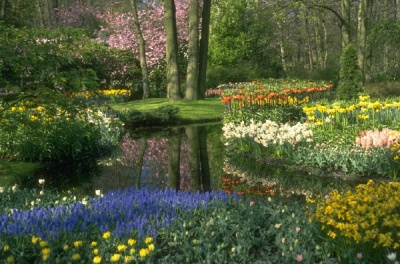 flowers_lake_garden_400_01